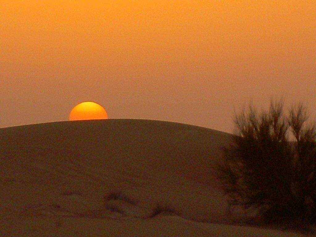 10 Reasons Why You Should Visit Dubai